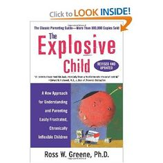 """This book is wonderful at understanding an """"explosive"""" child."""