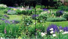 Photo of an Example of finished English Garden Design
