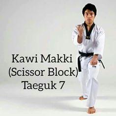 Taekwondo Poomsae 7 teory