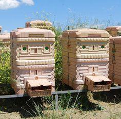 Apimaye Thermo Beehive | Bee Hive Journal
