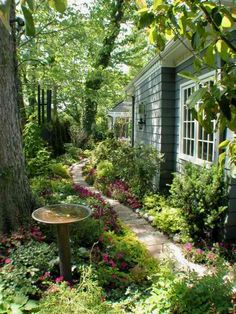 Beautiful side garden walk.