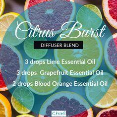 Citrus Burst Diffuser Blend 3 drops Lime Essential Oil 3 drops Grapefruit Essential Oil 2 drops Blood Orange Essential Oil Organic Essential Oils, Essential Oil Uses, Citrus, Drop, Diffuser Blends, Harvest, Benefit, Lime, Essentials