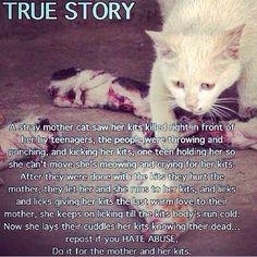 I will find them and I will kill them: