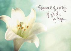 Renewal Spring Faith - Religious Easter Card