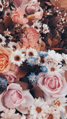 Aesthetic and spring Flowers
