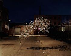 Des essaims dobjets emergent behavior 02 photographie bonus art