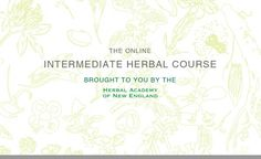 Holistic Business Owner Shares Her Experience Taking HANE's Online Herbal Programs | Herbal Academy of New England