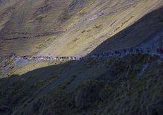 People Going To The Qoyllur Riti Festival In The Mountain, Ocongate Cuzco, Peru