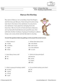 PrimaryLeap.co.uk - Reading Comprehension - Marcus the Monkey Worksheet