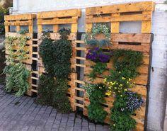 Huertos y jardines verticales