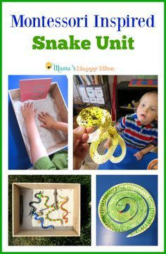 A fun collection of Montessori Inspired Snake Unit activities for toddlers and preschoolers. It includes pre-reading, prewriting, sensory play, art, life-cycle and more. - http://www.mamashappyhive.com