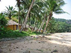 Praia Armazém (Macaco)