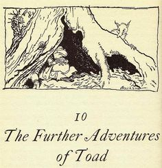 The Further Adventures of Toad