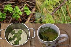 Kruidengeheimen-Braam Spinach, Vegetables, Food, Eten, Meals