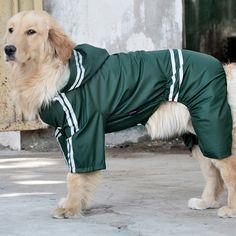 Dog Raincoat, Raincoat Jacket, Hooded Raincoat, Big Dogs, Large Dogs, Dogs Golden Retriever, Labrador Retriever, Dog Breeds, Pets