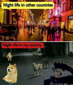 belikebro|memes|9gag|funnys memes| i love you memes
