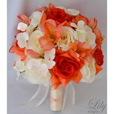 Ivory Coral Orange Champagne