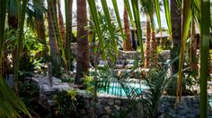 The oldest hot mineral spa in the country, Two Bunch Palms offers restorative treatments and unique wellness classes amidst the healing waters of Desert Hot Springs.