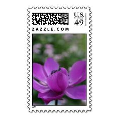 Sweet Anemone Postage Stamps Floral Photography by PB