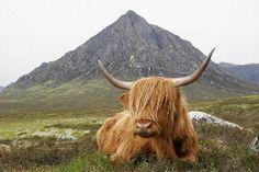 history of scotland -