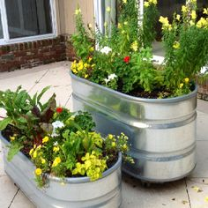 Get inspired with our Container Gardening Ideas for small containers, urns and many more. Create features in your outdoor spaces. Large Backyard Landscaping, Ponds Backyard, Landscaping With Rocks, Landscaping Tips, Trough Planters, Large Planters, Galvanized Planters, Galvanized Decor, Galvanized Steel