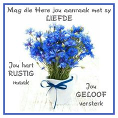 Lekker Dag, Goeie More, Afrikaans Quotes, Inspirational Bible Quotes, Good Morning Quotes, Herbs, Donkeys, Personal Development, Amen