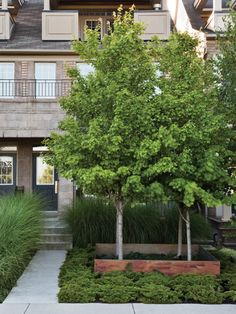 Photo Gallery: Front Yards With Curb Appeal