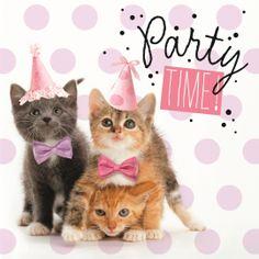 Verjaardagskaart vrouw - party-time-met-poesjes