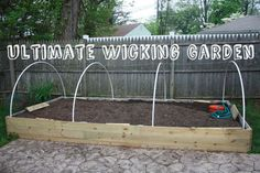 How To Build The Ultimate Auto-Wicking Garden