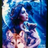 What Are Diamond Painting Custom photo? - Collections and Tips - Cross Paintings, Easy Paintings, Animal Paintings, Cross Stitch Art, Cross Stitch Embroidery, Wolf Moon, 5d Diamond Painting, Drawing Skills, Embroidery Kits