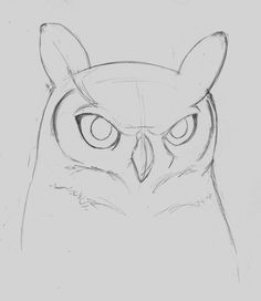 how to draw a owl step by step - Google Search