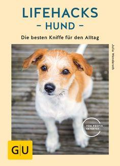 Wundermittel: Morosche Möhrensuppe für Mensch und Hund – hundekind-abby.deHundeblog