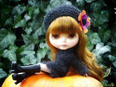 Stellie, pumpkin queen