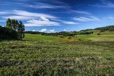 Interesting Facts About Poland: Suwałki Landscape Park