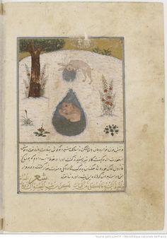 Kalīla va Dimna. Traduction persane d' d'Abū l-Ma'ālī Naṣr-ullāh Munšī