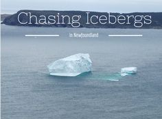 Chasing Icebergs in Newfoundland Newfoundland And Labrador, North America, Road Trip, Posts, Blog, Messages, Road Trips, Blogging