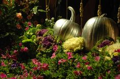 An elegant Halloween party idea. Not all Halloween parties need be of ghosts and scary things. Here's an idea to enjoy dressing up, having treats and keeping it elegant No Carve Pumpkin Decorating, Easy Pumpkin Carving, Carving Pumpkins, Carrot Flowers, Pink Flowers, Pink Roses, Brass Outdoor Lighting, Origin Of Halloween, Flowering Kale
