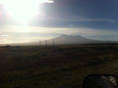 Mt Ruapehu from the desert road