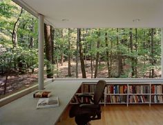 A library in the Catskill Mountains by Peter Gluck
