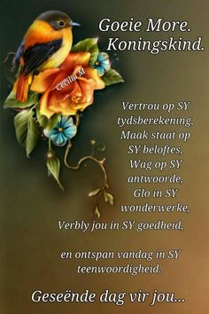 Goeie More, Afrikaans Quotes, Day Wishes, Bible Verses Quotes, Beautiful Pictures, Thoughts, Sayings, Pretty, Lyrics