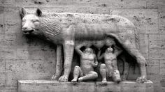 The She-wolf with Remus and Romulus, photo from @HistoryNeedsYou