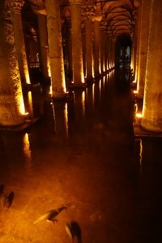 """The Basilica Cistern is the largest of several hundred ancient cisterns that lie beneath Istanbul. Don't miss the two Medusa heads. (How did they end up there?) It looks like a movie set, and in fact was a location for the James Bond film """"From Russia with Love""""."""