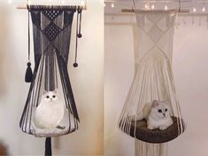 shop: Boho Macrame Pet Hammock, Macrame Cat Planter, Macrame Cat Hanger, Cat Bedding, Puppy Bedding Excited to share this item from my Hanging Beds, Hanging Hammock, Diy Hanging, Hanging Plants, Diy Cat Hammock, Hammock Bed, Puppy Beds, Cat Room, Macrame Projects