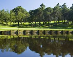 Hotel Camiral is surrounded by the stunning PGA Catalunya Resort and by one of the most exciting areas in Europe with a range of activities to offer. Hotel Wedding, Wedding Venues, Dublin, Marketing Website, Web Design, Golf Tips, Perfect Wedding, Golf Courses, Activities