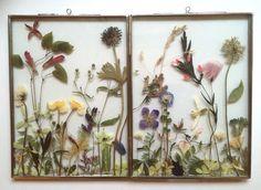 Flower frame dubbel zilver