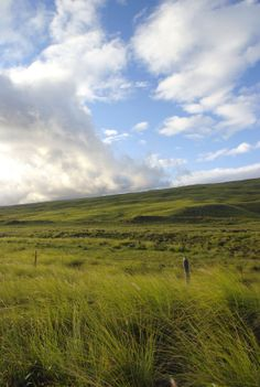 Parker Ranch - Kamuela, Big Island, Hawaii - The Largest Cattle Ranch in America