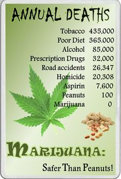 Become a member of the best marijuana fans social network: http://angrybud.com/buzzfeed