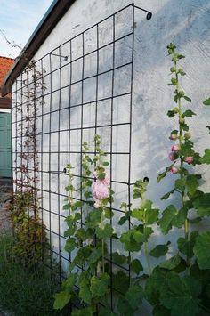 25 Eye-Catching DIY Trellis Ideas For Your Garden #DIY #EyeCatching #Garden #Ideas #Trellis