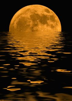the setting moon ~ amazing!
