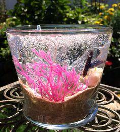 Gel Candle - Fish Tank/ Nautical on Etsy, $20.00